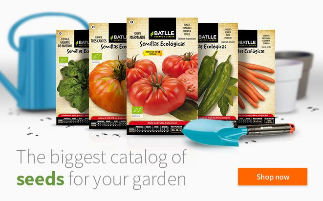 The biggest catalog of seeds for your garden
