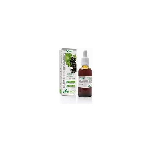 Extracto de Grosellero Negro Soria Natural, 50 ml