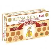 Reina Real 600 Robis, 20 ampollas de 10 ml