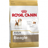 Royal Canin Beagle Adulte
