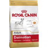 Royal Canin Dalmatien Adulte