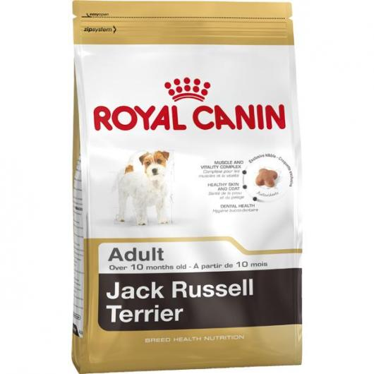 Royal Canin Jack Russel Adulte