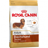 Royal Canin Teckel Adulte