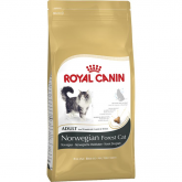 Royal Canin NORWEGIAN