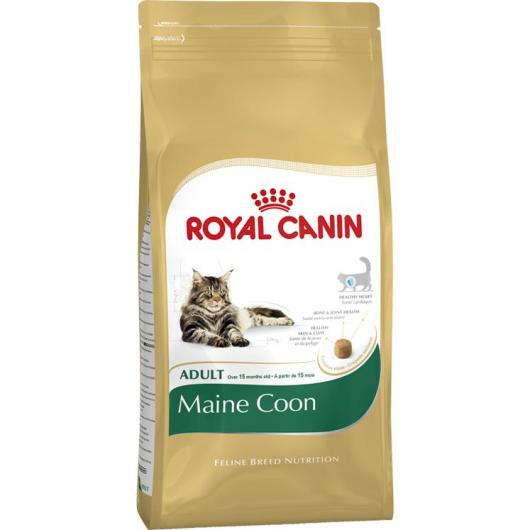 Royal Canin Maine Coon adulto