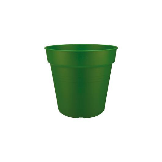 Vaso Green basics forest green