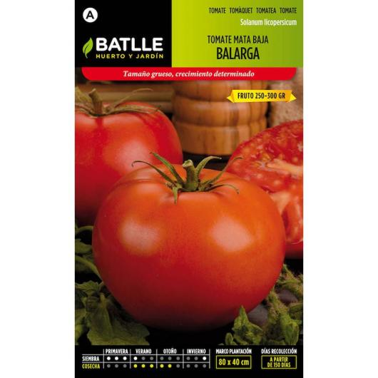 Graines de tomate Balarga