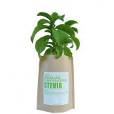 Kit potager Garden Pocket - Stevia