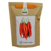 Kit potager Garden Pocket - Piment
