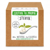 Kit plantation Garden Pocket - Stevia