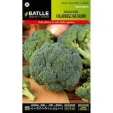 Graines de brocoli vert calabrais
