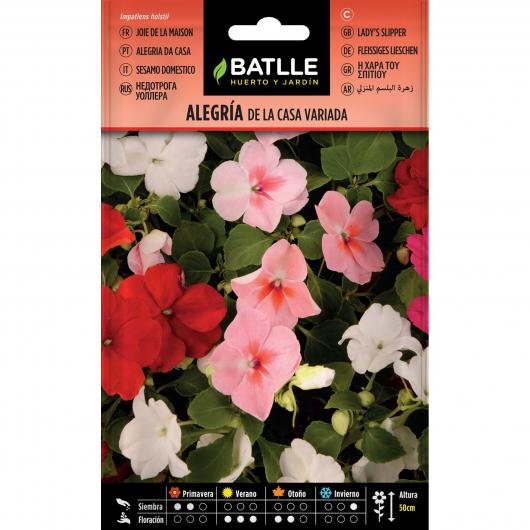Graines d'impatiens walleriana