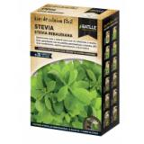 Stevia growing kit