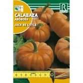 Semillas de Calabaza jack be little