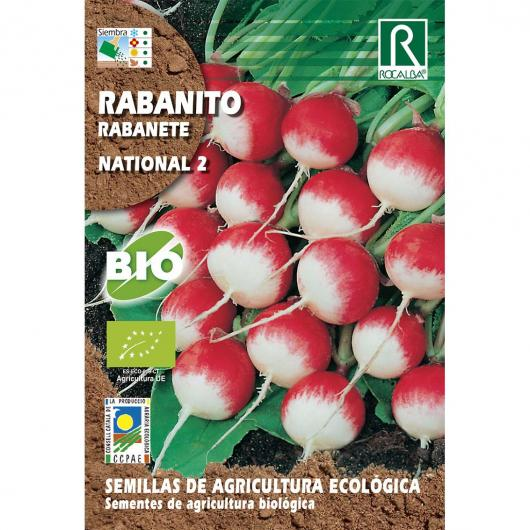 Semillas de rabanito national 2