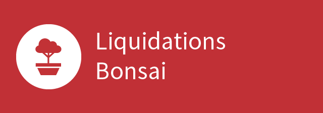 Liquidations Bonsai